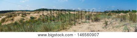 Panoramic View Of Sand Field