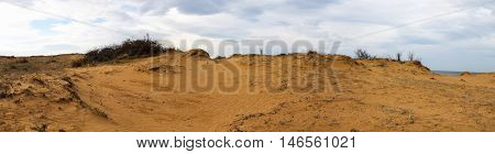 Panoramic View of Sandy beach With Sagebrush