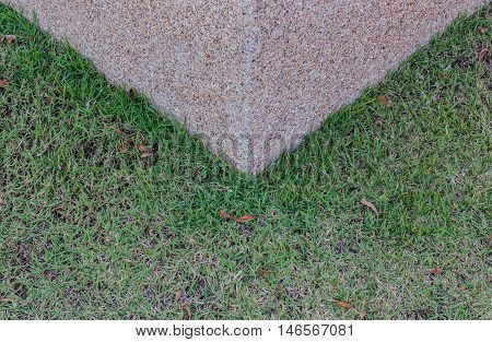 background of green grass and cement screed.
