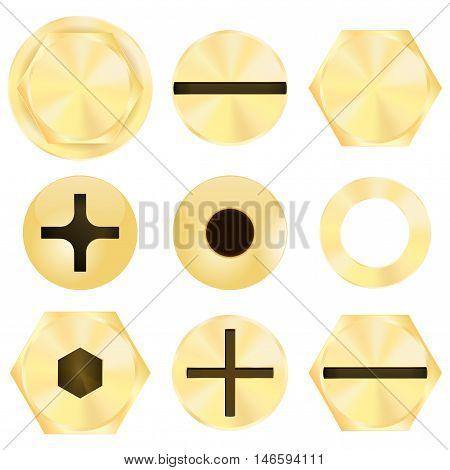 Set of golden screw heads. Vector illustration isolated on white background
