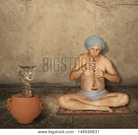 A cat looks like a hairy snake. This strange reptile sits in a pot. A fakir is playing a flute near it.