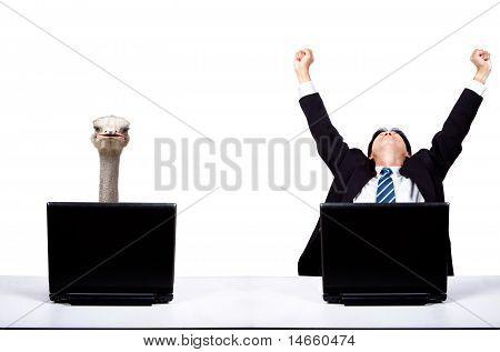 Businessman work with Ostrich partner.