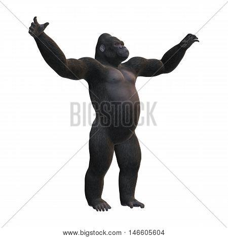 3D Rendering Gorilla On White