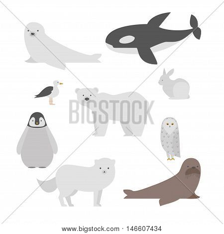 Set of nine arctic and antarctic animals. Polar bear, baby penguin, seal, walrus, arctic owl, white rabbit, fox, whale and sea gull