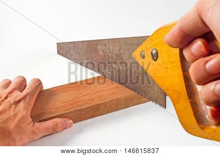 Hand holding saw with log on the white background