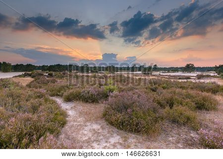 Shifting Sands And Heathland