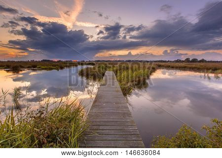 Footbridge In Wetland