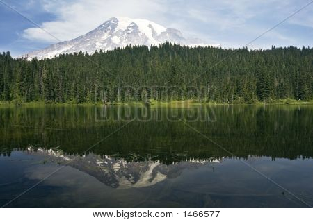 Rainier Reflection