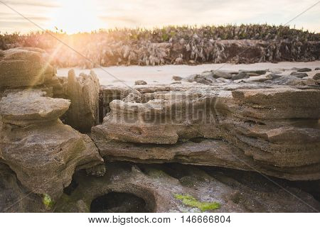 Rock on the beach with the horizon on the background