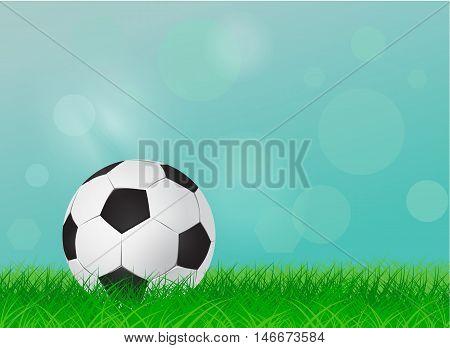 soccer ball on a green lawn football field - vector illustration