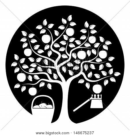 vector apple tree with basket of apples and fruit picker isolated on black round