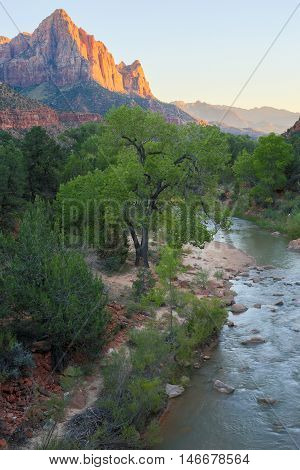 The Watchman and Virgin River from the Canyon Junction Bridge, Zion National Park, Utah, USA. The view of the Watchman from Canyon Junction Bridge is one of the most highly photographed views in Zion National Park.