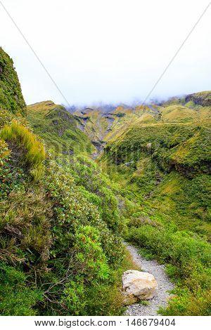 Creeks Created By Lava Flow On Mount Taranaki, New Zealand