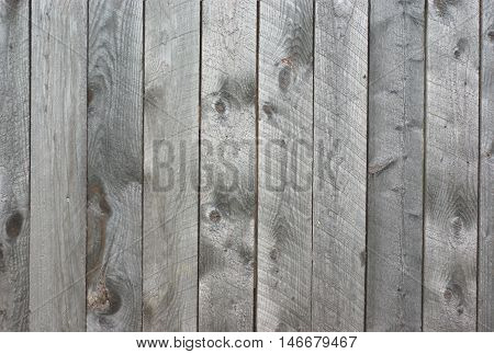 rough wood barn wall texture of gray cedar planks