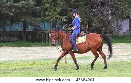 Cajamarca Peru - April 9 2016: Young woman postiing on bay horse with English tack in Cajamarca Peru on April 9 2016