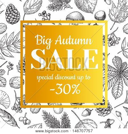 Autumn sale vector banner with leaves and berry. Hand drawn fall illustration with frame and botanical elements. Great for poster banner voucher offer coupon business promote.