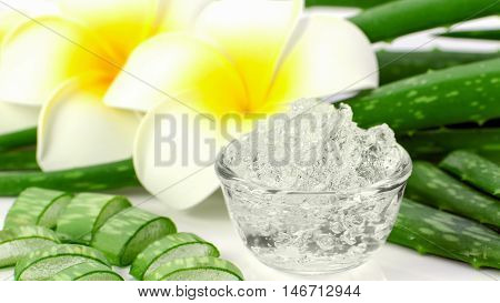 Pure Aloe Vera gel on aloe vera leaves and plumeria background. Aloe Vera gel almost use in food medicine and beauty industry.