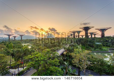 The Super Tree Grove at Gardens by the Bay in Singapore. Spanning 101 hectares and five-minute walk from Bayfront MRT Station. poster