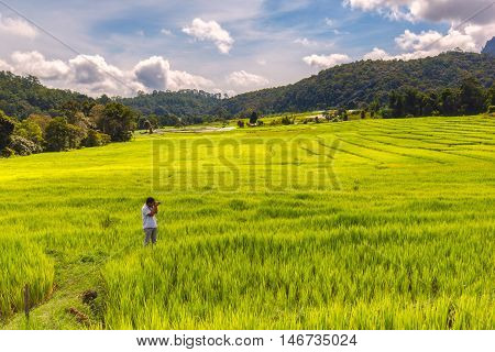 Young man photographer take a photo green terraced rice field in Mae Klang Luang Mae Chaem Chiang Mai Thailand