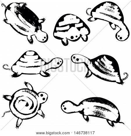 Vector set with black cute sea turtles wall stickers. Underwater reptiles icons collection
