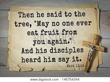 TOP-350. Bible verses from Mark.Then he said to the tree,