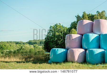 Pink and Blue Large Round Bale Silage