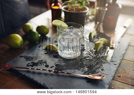 Glass Of A Freshly Prepared Gin And Tonic