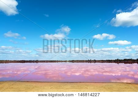Panoramic view of Pink Salt Lake in Western Australia. This lake turns pink in summer cause of an algae with red pigments. Blue sky horizoncopy space