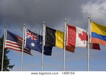International Cooperation 3