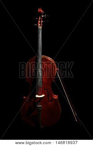 Contrabass on dark background