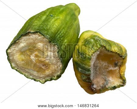Two pieces of rotten cucumber on white background poster