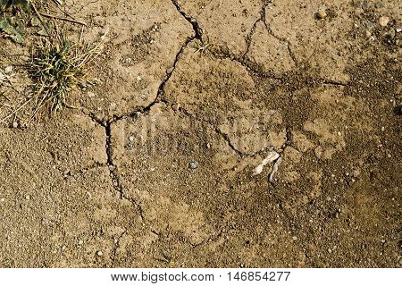 Texture of the soil, nature background, cracked ground texture, stony ground texture, excellent texture for use in your creative project, stony ground, autumn