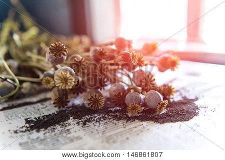 dried poppy bolls close up poster