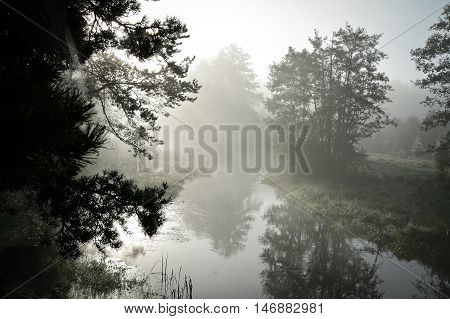 river in the mist, the morning time