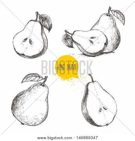 Set of hand drawn sketch style pears. Sliced ripe pears. Vintage organic food illustration.