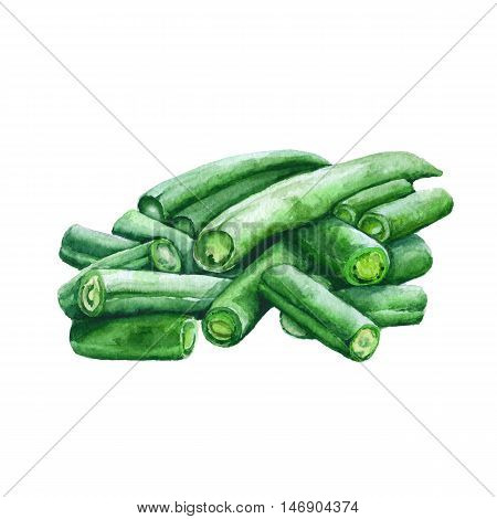 Group of green beans isolated on a white background. watercolor illustration.