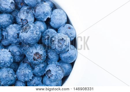 Bunch Of Fresh Blueberries In White Bowl - Studio Shot