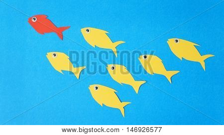 Fishes swim in group, leadership and teamwork concept
