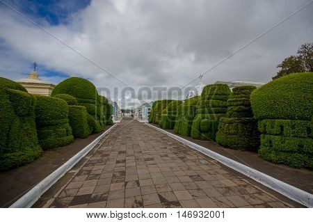 TULCAN, ECUADOR - JULY 3, 2016: grey cobble path with some topiary sculptures on the sides.