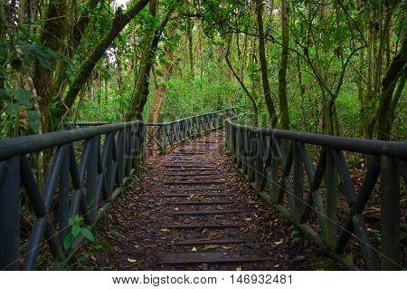 PASTO, COLOMBIA - JULY 3, 2016: wood path in la cotora island located in la cocha lake.