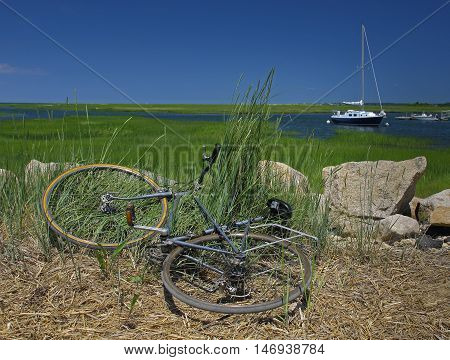Bicycle Laying in Reeds and Rushes Along a Jetty - A bike trip to the seaside with a sailboat in the distance