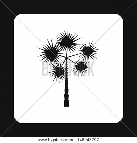European fan palm - chamaerops humilis icon in simple style isolated on white background vector illustration