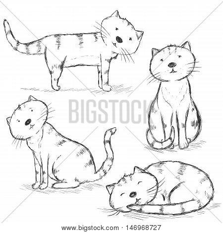 Vector Set Of Sketch Cat Characters
