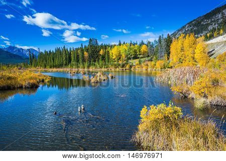 Lake Vermilion among the forests. Indian summer in the Rocky Mountains of Canada