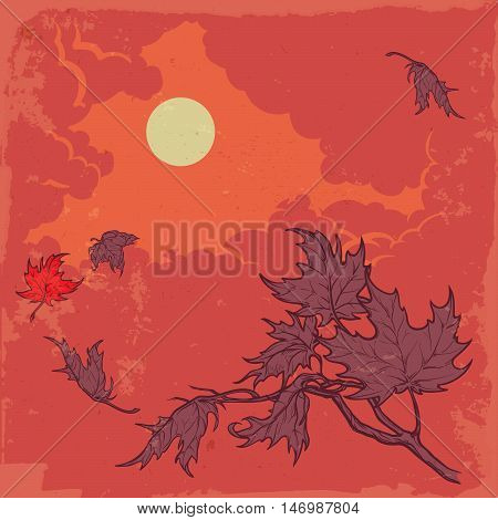 Wind stripping leaves off the Maple branch. Stormy sky background. Autumn mood. Hand drawn sketch with watercolor imitation. EPS10 vector illustration.