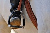 A tight shot of a rider's english boot in stirrup poster