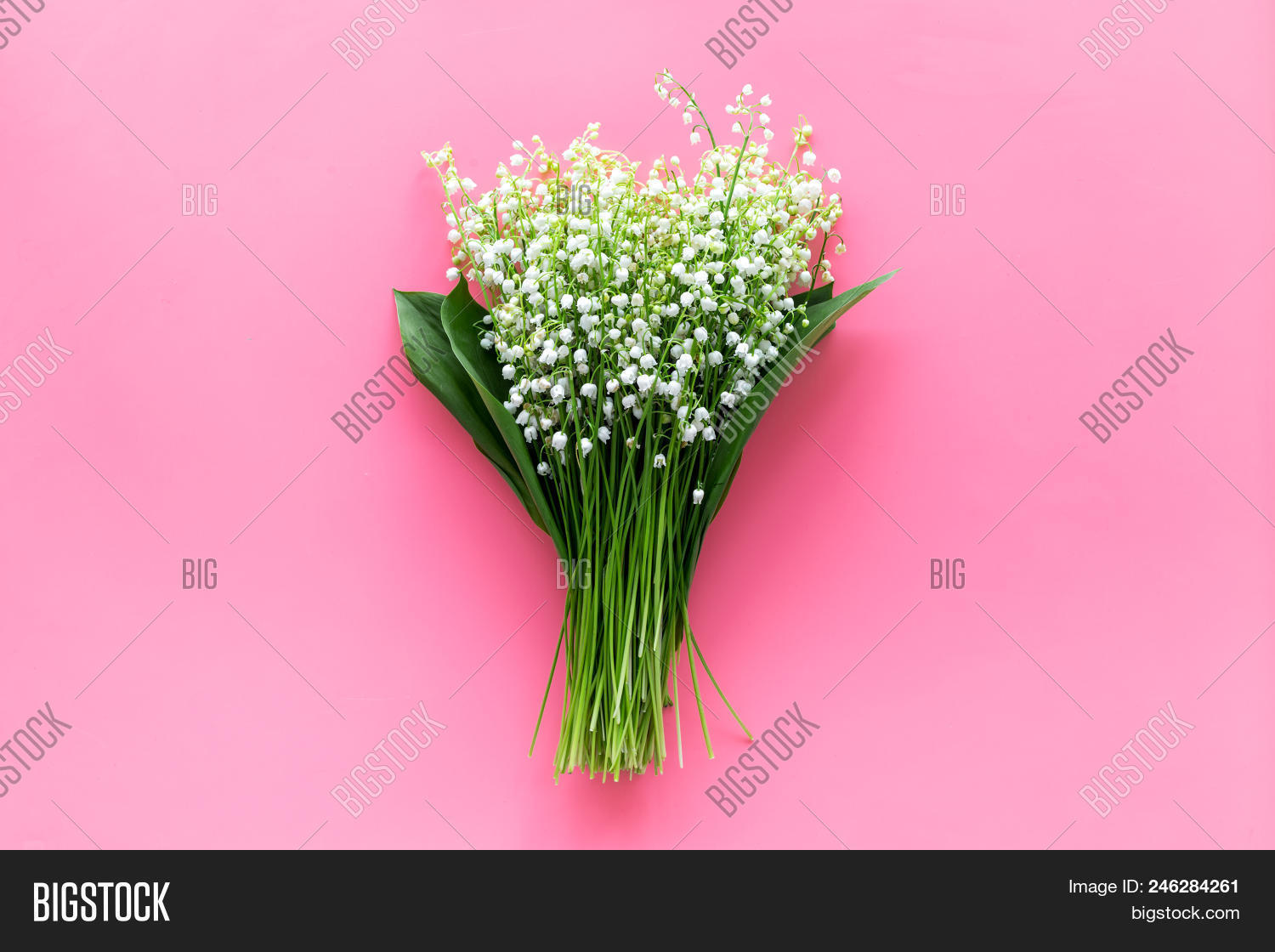 May flowers bouqet image photo free trial bigstock may flowers bouqet of lily of the valley flowers on pastel pink background top view izmirmasajfo