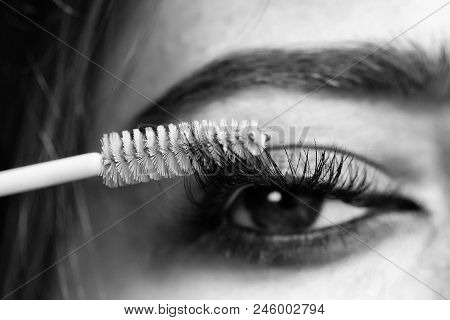 Girl Is Applying Mascara. Beautiful Female Eye With Extreme Long Lash. Mascara Applying Closeup With