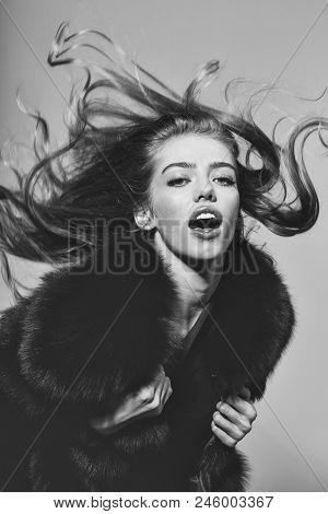 Advertising Of Fur Products. Pretty Woman Or Cute Sexy Girl With Long Beautiful Curly Blonde Hair An