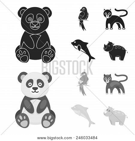Panda.popugay, Panther, Dolphin.animal Set Collection Icons In Black, Monochrome Style Vector Symbol
